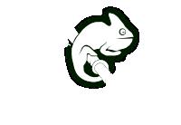 open-suse.ru логотип